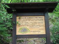 京都のお守りお届けします。「小判守り」