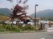 oohara002.jpg
