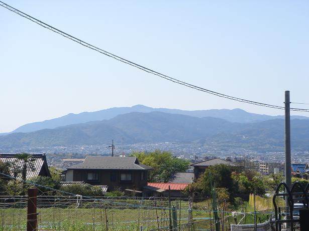 rakuhoku003.jpg